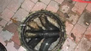 Cafe Saffron blocked sewer 2